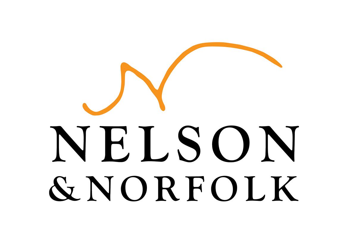 Nelson-Logo-12