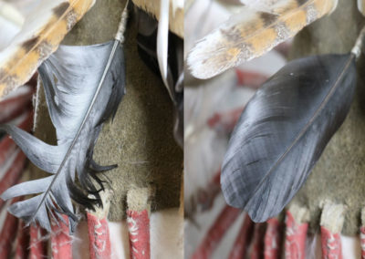 Crow feather before and after reshaping