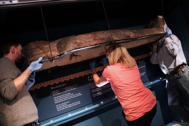Mummies on the Move
